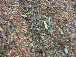 Tree Waste