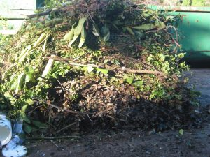 Green Waste from Gardening & Landscaping